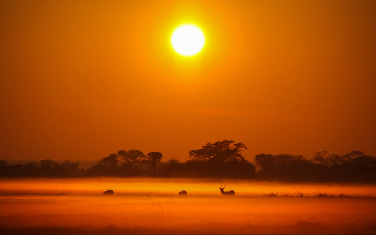 2008, A mist rising over the Busanga plains at sunrise. Given the right scenarios, you can make magic no matter how long you have owned a camera.