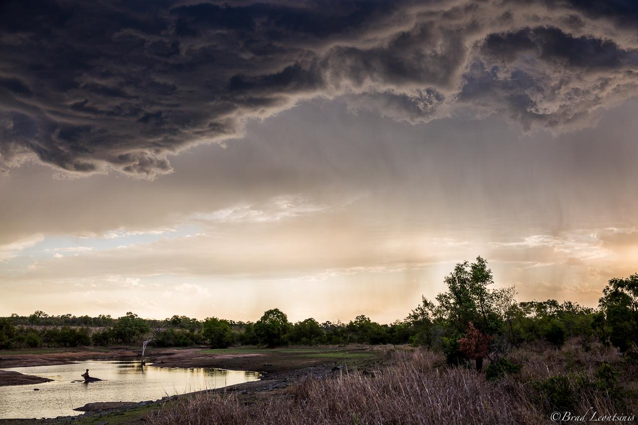 Kruger Evenings