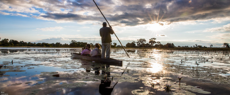 Journey through the Okavango Delta